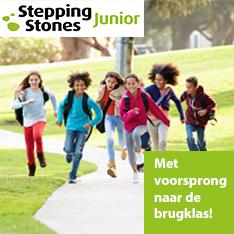 Noordhoff Stepping Stones Junior